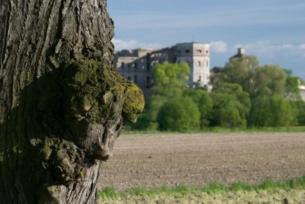 Inne spojrzenie na zamek Krzyżtopór