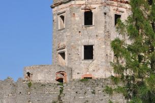 Zamek Krzyżtopór w Ujeżdzie