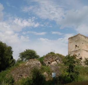 Zamek w Tudorowie